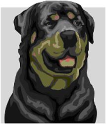 Dog Bites by California Dog Bite Attorney Norman Gregory Fernandez